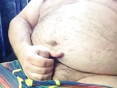Bear chub cum hotel