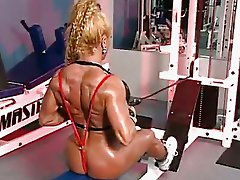 Gym Heat 3.9