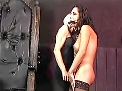 Transsexual Submission