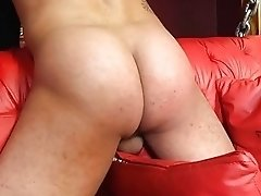 Horny slave boy gets it hard from his shemale mistress
