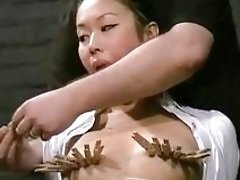 Oriental bound BDSM bitch Koko Li gets her nipples clamped