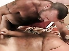 Quick Bear Jerk Off