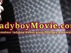 Amateur Ladyboy Venus Gives Blowjob