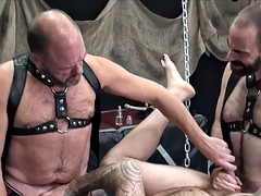 bearded biker bear assdrilled in raw trio
